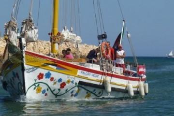 Bom Dia Boat Trips Lagos Algarve