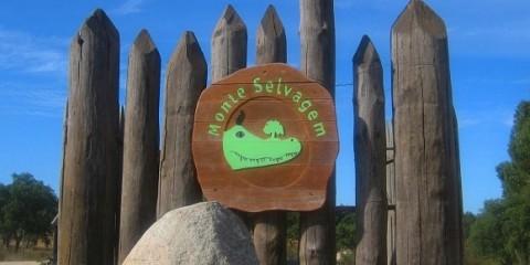 Monte Selvagem Wild Mountain ontemoro-o-Novo